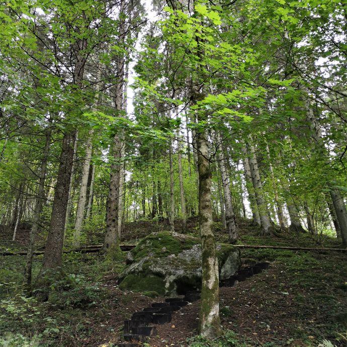 3_Mikytai_trail_Antanaviciute_R_stone_with_a_devil_s_footprint