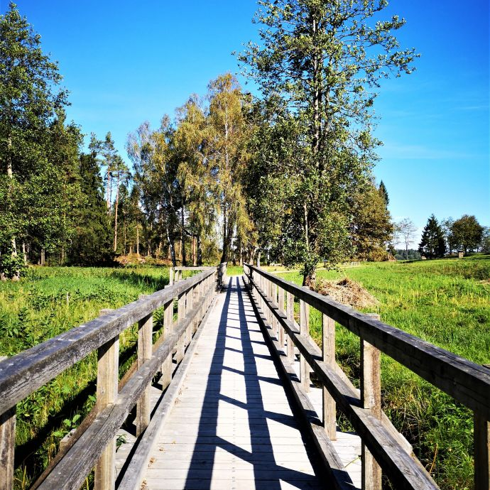 4_seire_trail_antanaviciute_tiltas_per_gaudupi